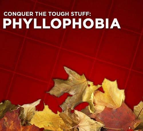 Phyllophobia: The Fear of Leaves